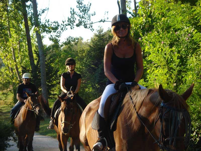 Passeggiate a cavallo e maneggio gubbio